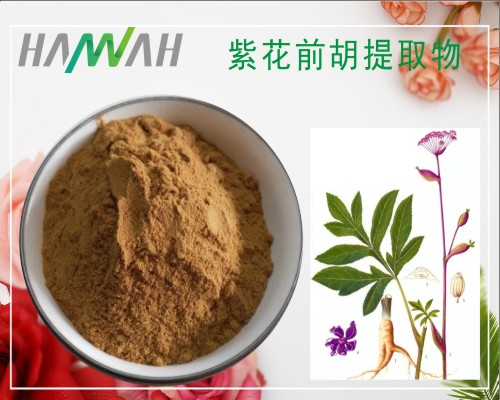 紫花前胡提取物10:1 比例 土当归粉 现货 厂家供应
