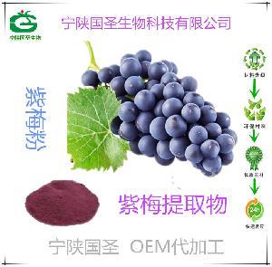 紫梅酵素 紫梅提取物 优质原料 源头厂家 现货 包邮