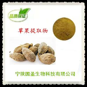 草果提取物 优质原料 OEM代工 代餐粉生产 欢迎咨询