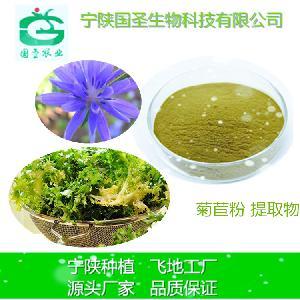 水溶性菊苣提取物10:1 药食同源SC认证 植物提取物 菊苣粉