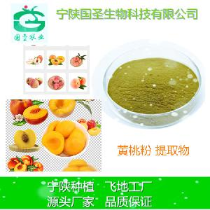黄桃粉 黄桃提取物 速溶 规格可定制 生产厂家 现货包邮 宁陕厂家