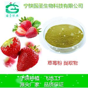 草莓提取物 宁陕厂家 固体饮料原料 草莓粉