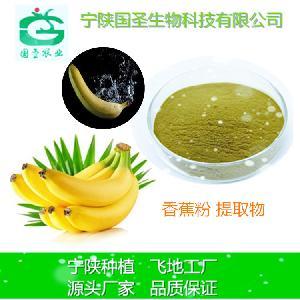 香蕉浓缩果粉 天然香蕉提取物99% 速溶果粉 厂家直销 量大优惠