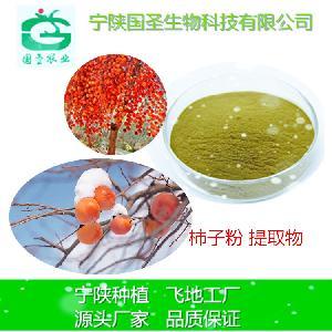 柿子粉 柿子提取物 规格可定制 速溶 生产厂家 现货包邮