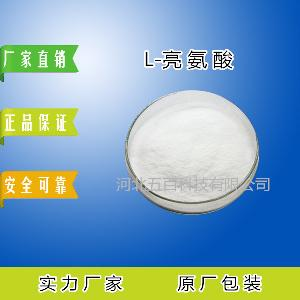 L-亮氨酸生产厂家 营养强化剂