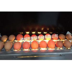 优质全自动微山湖鸭蛋专用清洗机