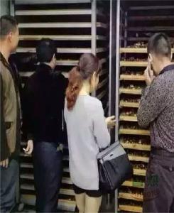 鸡枞烘干机牌子好上门安装服务好