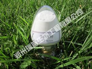 食品级苹果酸钾 原料 国标 供应 - 郑州瑞普