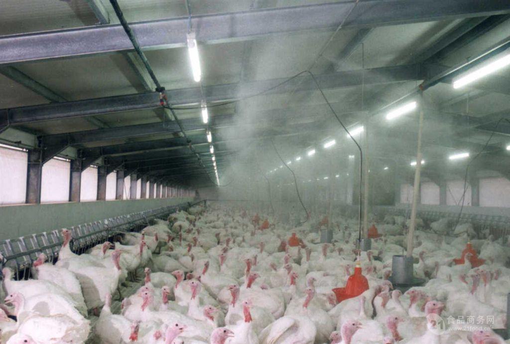 养殖场室内空气加湿