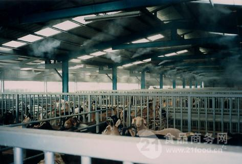 养殖场专用喷雾消毒设备