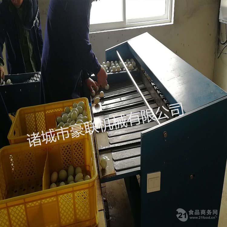 优质分大小设备鸭蛋分级机