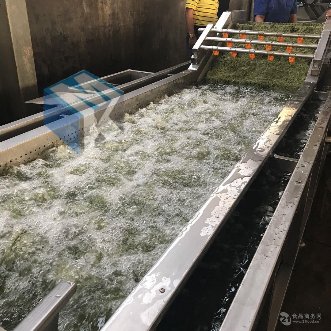 气泡清洗机 果蔬清洗流水线 多功能净菜加工清洗设备