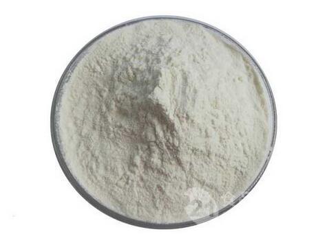 上海营养强化剂牛骨胶原蛋白价格