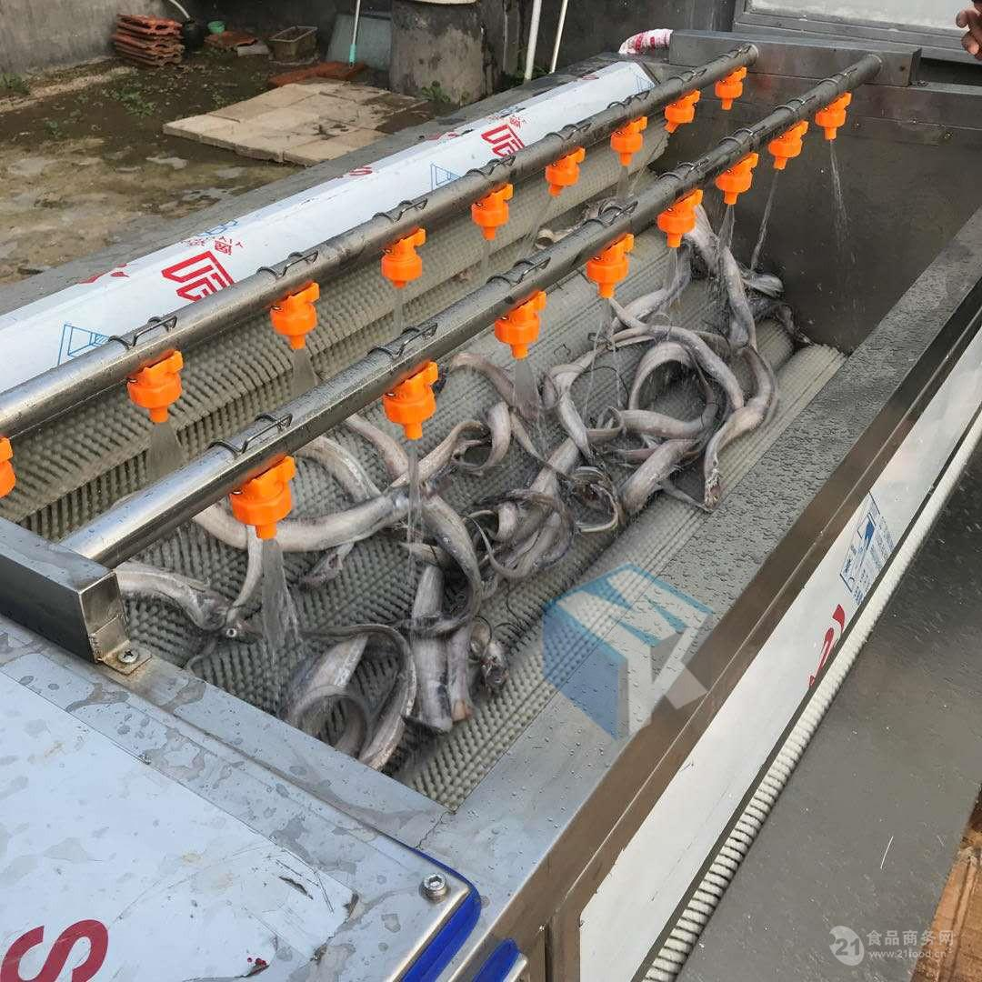 带鱼专用去鳞清洗机   海产品去鳞清洗设备