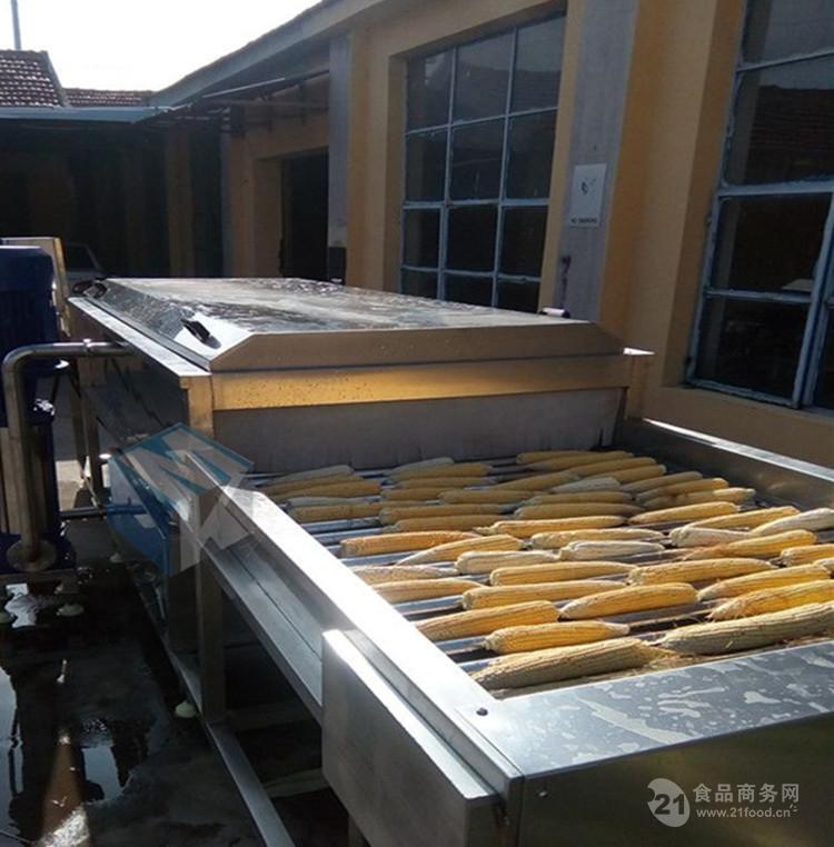 大型玉米清洗机  全自动玉米加工流水线设备