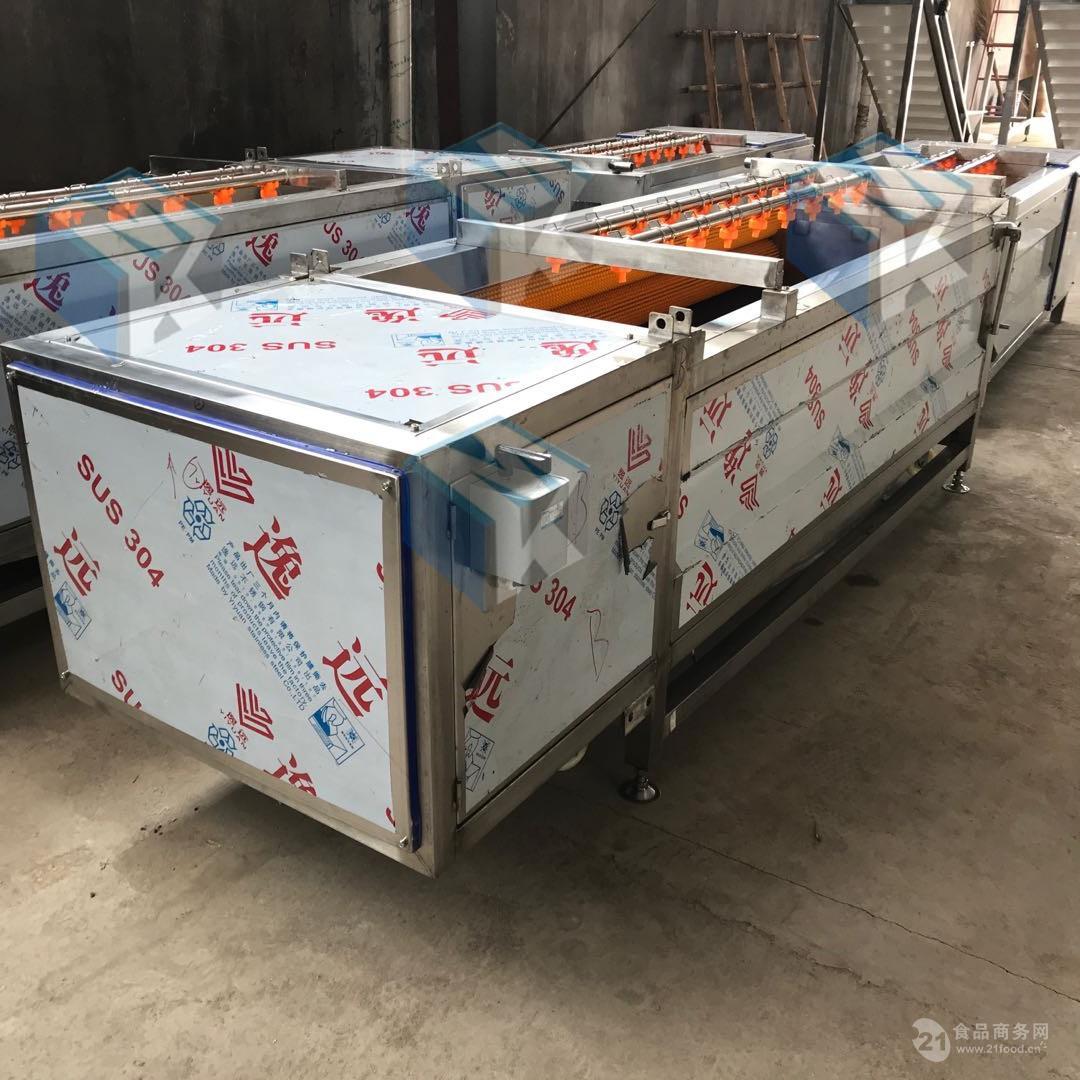 土豆去皮清洗机 厂家生产果蔬去皮清洗设备