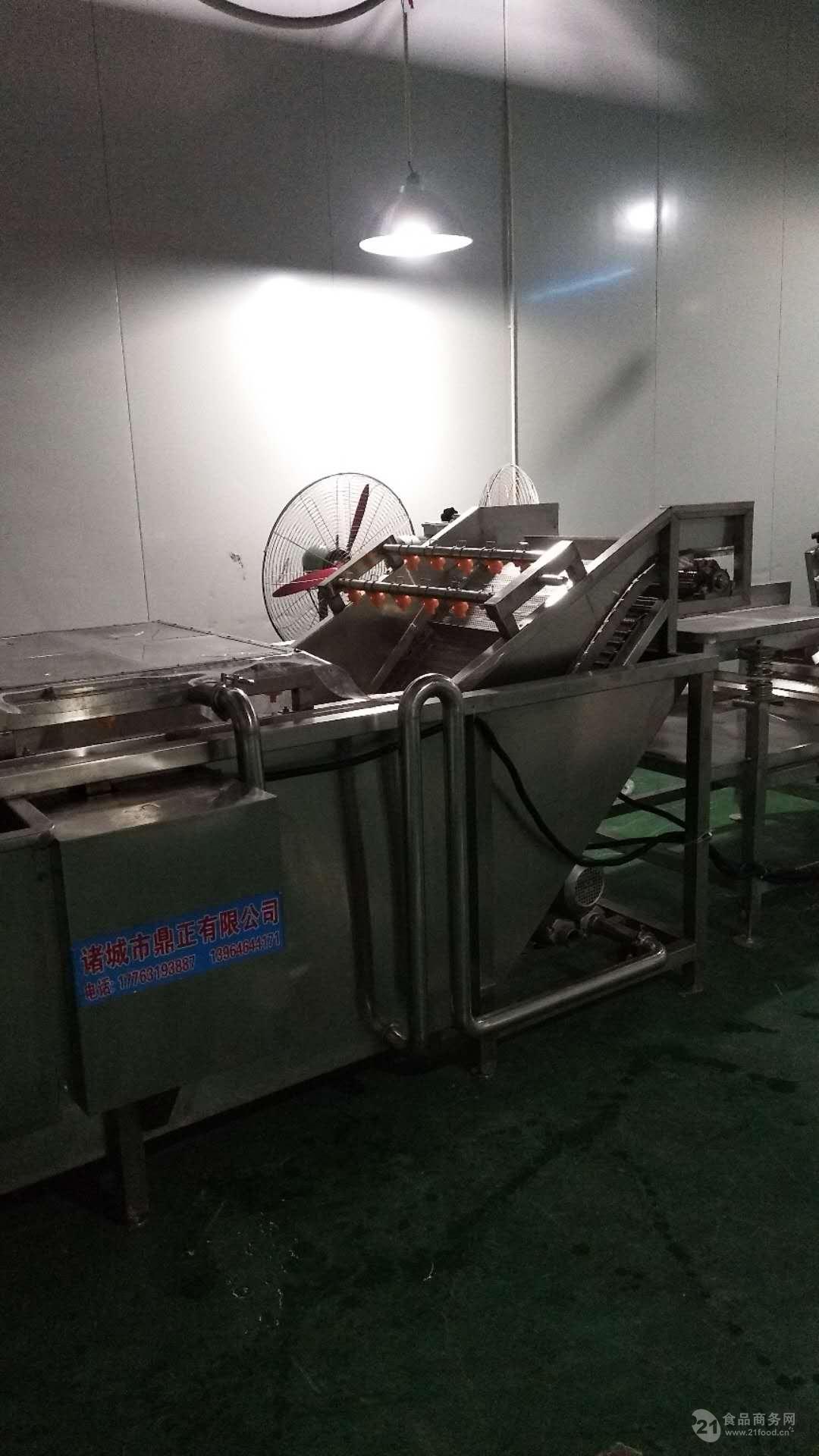 供应高压气泡水浴叶类蔬菜清洗机 厂家直销