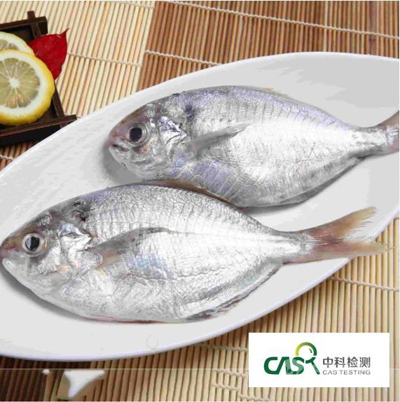 盐渍鱼第三方专业检测