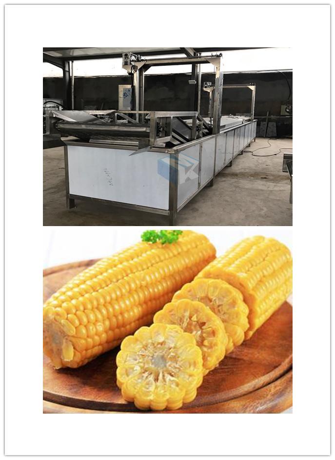 厂家生产果蔬蒸煮流水线 全自动玉米蒸煮漂烫护色杀青设备价格