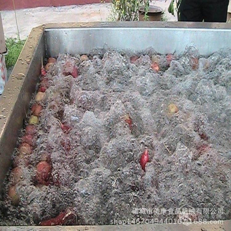 厂家直供水果气泡清洗机 水果加工清洗设备 李子清洗流水线