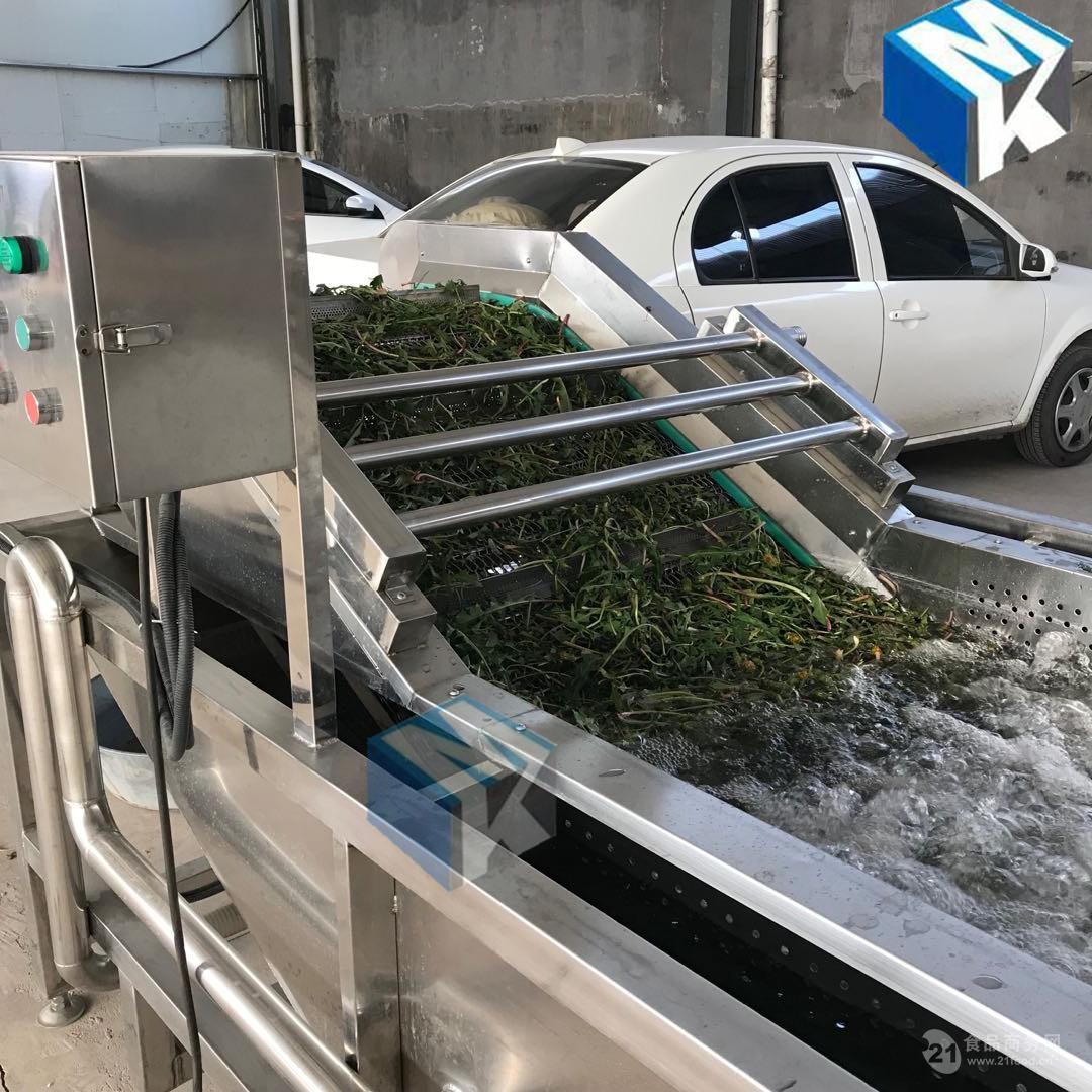 低价热销百合去杂气泡清洗机 中草药喷淋自动清洗设备