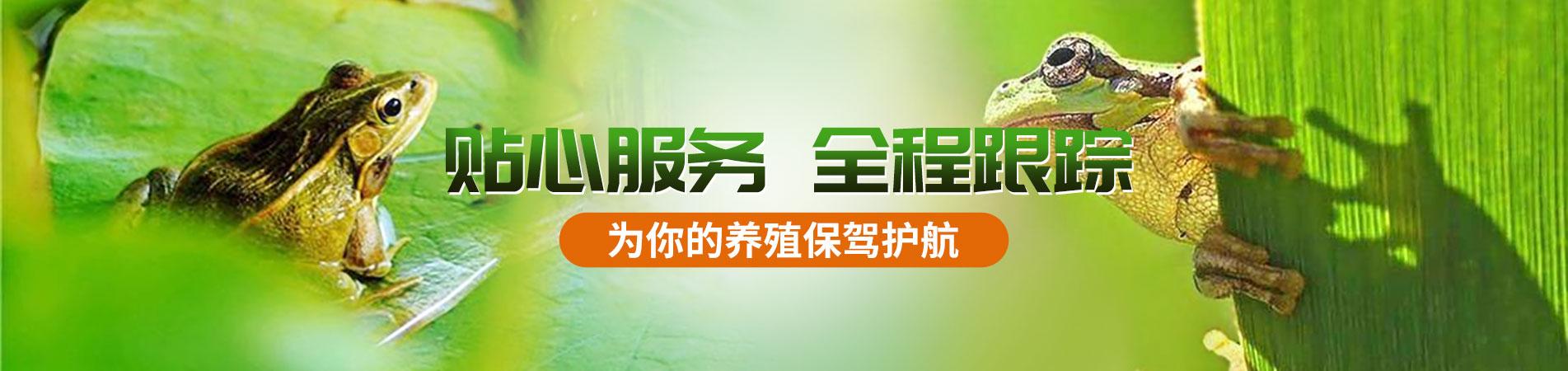 潜江市蛙之道水产养殖专业合作社