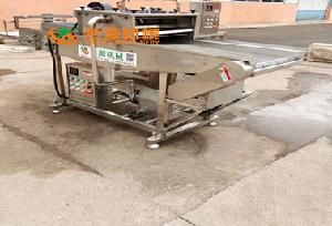 河南鲅鱼块上浆挂糊机专业厂家