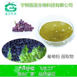 水溶性葡萄籽提取物 10:1植物提取 厂家直销 葡萄籽粉原花青素