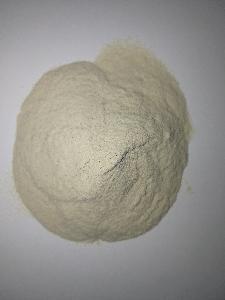 圆苞车前子壳粉 99%