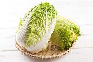 长沙食堂蔬菜配送公司 基地直供 -大白菜
