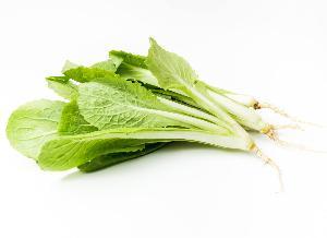 长沙食堂蔬菜配送公司 基地直供-小白菜