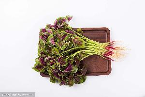 长沙食堂蔬菜配送公司 基地直供 -红苋菜