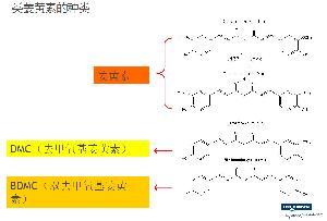 姜黄素种类