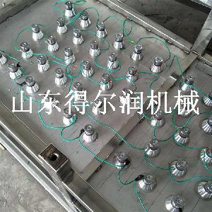 山东得尔润机械供应小龙虾超声波清洗线 虾线清洗加工流水线