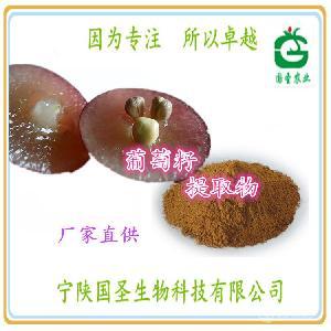 葡萄籽提取物 原花青素95% 宁陕国圣 可OEM代工 固体饮料