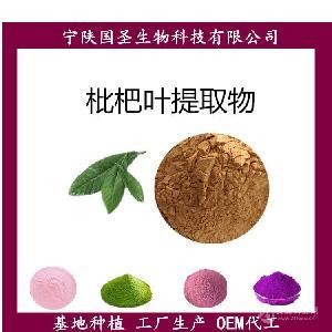 枇杷叶提取物  宁陕国圣自产自销 优质原料 OEM代工