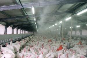 鸡舍喷雾加湿器 养殖除臭消毒喷雾机