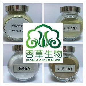 西芹酵素粉 营养代餐粉 西芹浓缩青汁粉