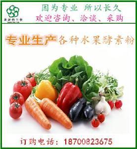 复合果蔬酵素粉  果蔬酵素粉   斯诺特生产厂家