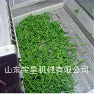 宝星牌青刀豆速冻机 质量好价格低