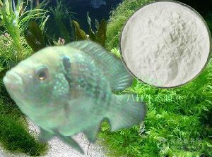 鱼胶原蛋白肽 鱼胶原蛋白