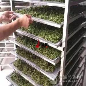 花椒干燥用什么机械设备 热泵空气能厂家