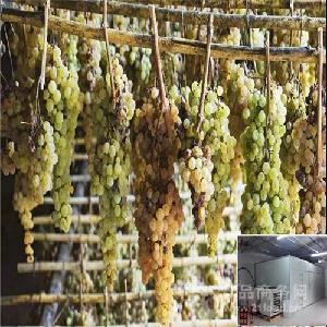 葡萄烘干用什么设备 空气能热泵机厂家