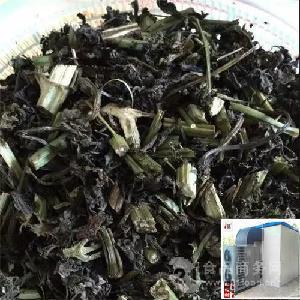 野菜干燥用什么设备好 空气能(热泵)机