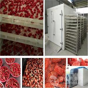草莓干燥用什么设备好 空气能热泵机厂家
