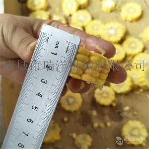 玉米切断机