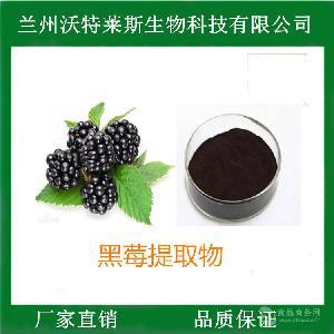 黑莓提取物 比例提取 多种规格 包邮