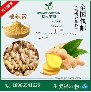 生姜提取物 姜辣素 5% 20% 干姜提取物 规格齐全 厂家批发