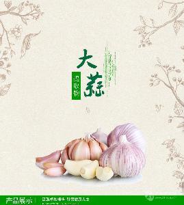 大蒜提取物 国圣生物  天然产品 源头厂家  全国包邮