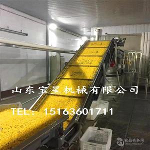 流态化玉米粒速冻机 玉米粒加工生产线供应商——山东宝星机械